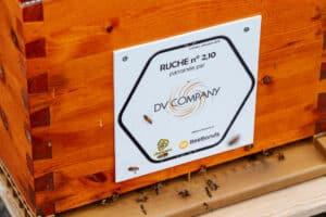 Dv Company - Beebonds